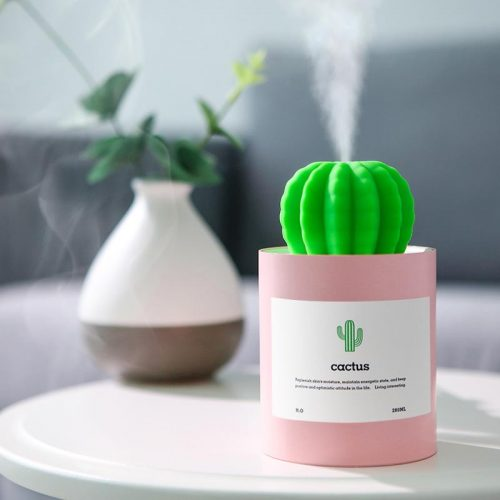 cactus humidifier
