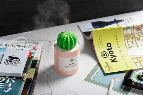 Humidifier Cactus
