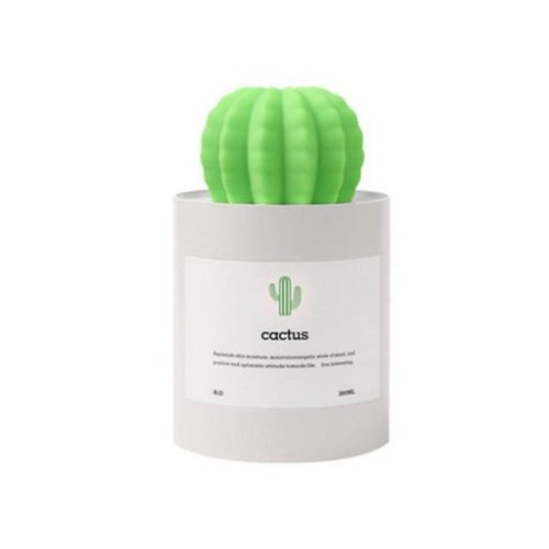 grey-cactus